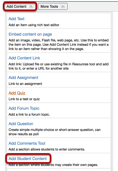 Click Add Content / Add Student Content.