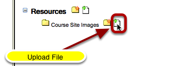 Hover your cursor over the folder you want to store the image file then click on Upload File.