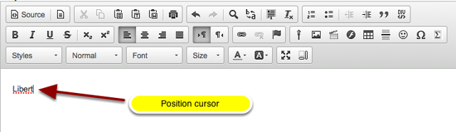 Position your cursor where you want to insert the special character / diacritical mark.