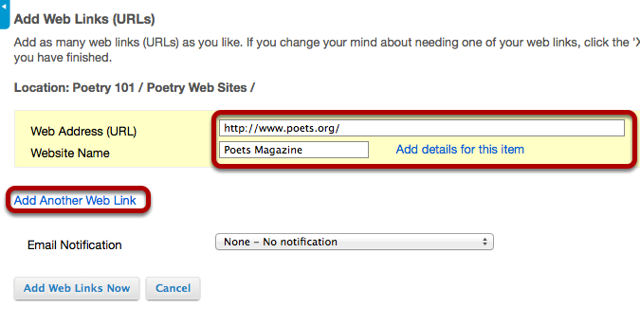 Enter (or paste) the web site address (URL) and enter a name of the link.