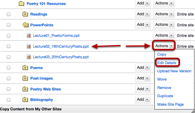 To set specific availability of a file or folder, to the right of the file or folder click Actions > Edit Details.