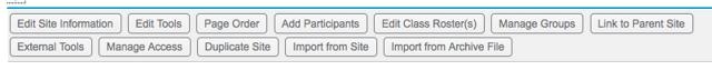Example of Site Editor Tools: