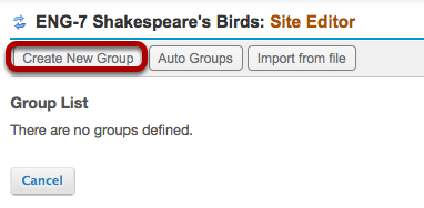 Method 1: (Manually create groups) - Click Create New Group.