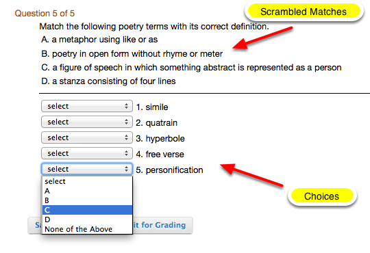 Example of what the Matching question looks like from the student view: