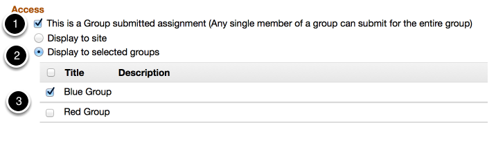 Access - group assignment with group submission.