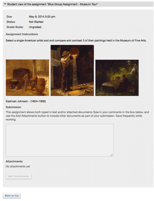 Example: Student View of the Assignment