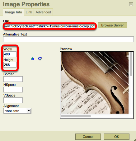 Method 1: (Linking to an image URL) - Paste the image URL into the box, adjust width/height, click OK.