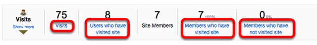 Another way to view details about site Visits is to click the individual Visit items.