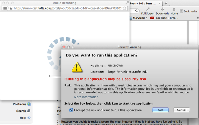 "If an application message is displayed, checkmark ""Accept"", then click ""Run""."
