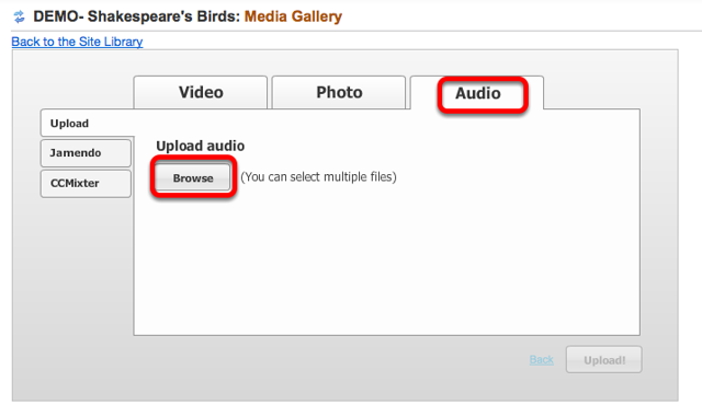 Click Audio tab, then Browse.