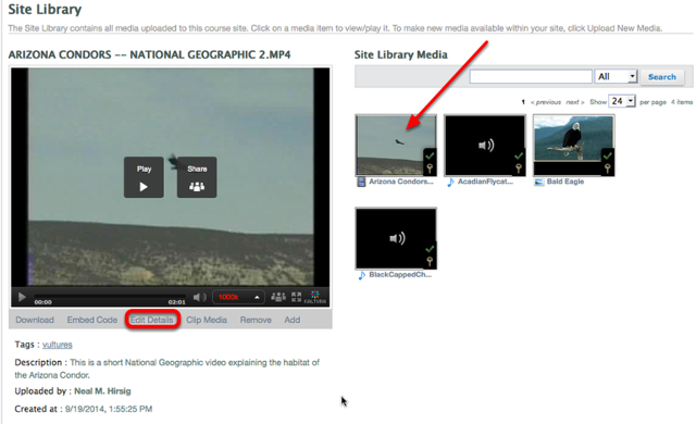 Select the media thumbnail, then at the bottom of the Media Player, select Edit Details