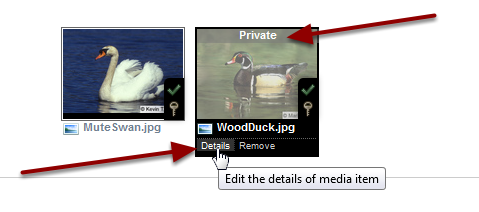 """Example: Student uploaded media to Site Library (initially """"Private"""")"""