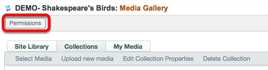 At the top of the Media Gallery tool, click on Permissions.