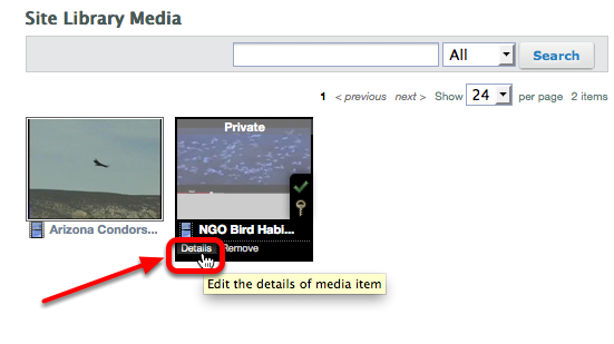 """To make media """"Public"""", click on Details at the bottom of the thumbnail."""