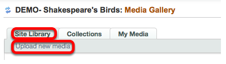 Click on the Site Library tab, then Upload New Media.