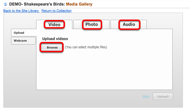 Select the Media Type tab, then click Browse.