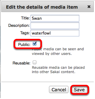 "Checkmark ""Public"", then click Save."