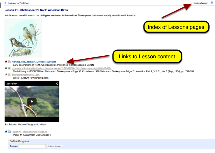 What is the Lessons tool?