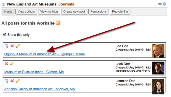 Example of the published post on the Journals home page