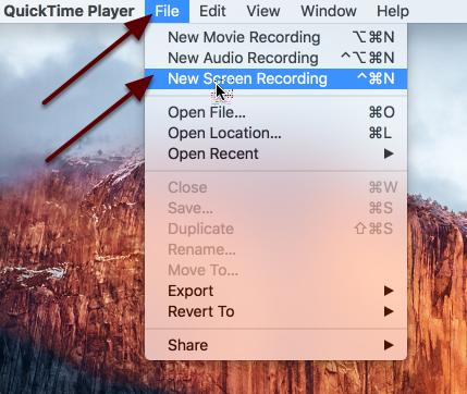 Click File / New Screen Recording