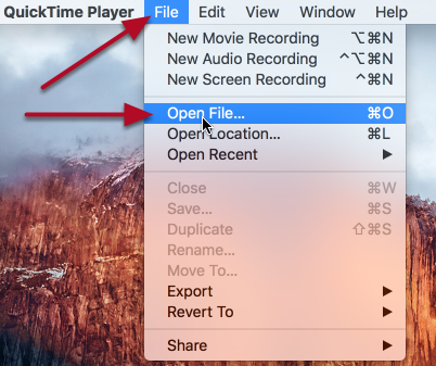 Click File / Open File, and open the video you want to edit.