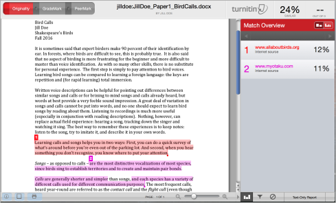 What is Turnitin?