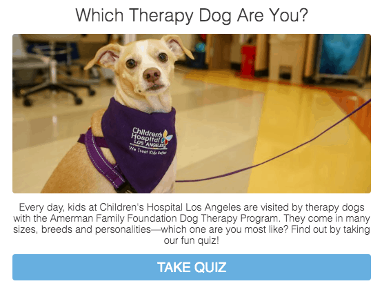 Which Therapy Dog are you? test