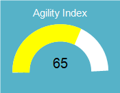 Agility Index