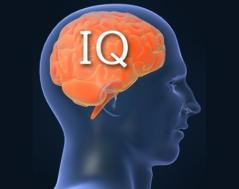 Video: What is IQ?