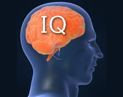 Video:What is IQ?