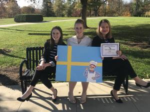1st Place - Flag Interpretation (Sweden)