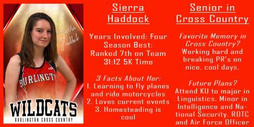 Sierra Haddock