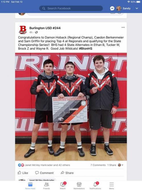 Boy Wrestlers
