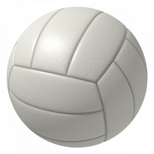 volleyabll