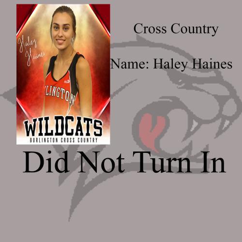 Haley Haines