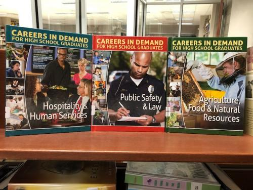 Non-Fiction titles for students who want to find our what careers are available for students who don't go to college