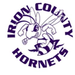 irion county isd