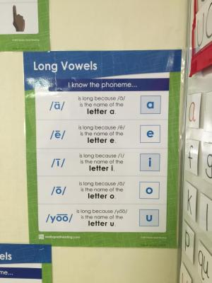 Really Great Reading: Long Vowel Poster
