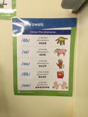 Really Great Reading:Other Vowels Poster