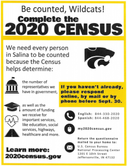 My 2020 Census