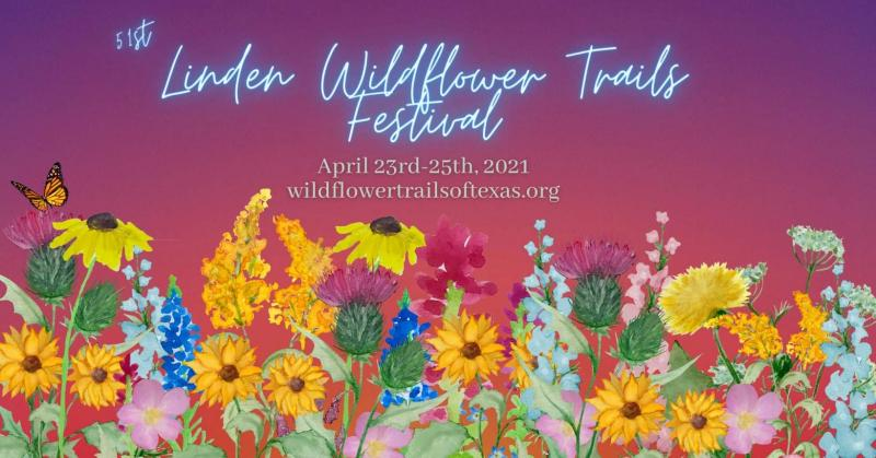 Art Students Compete at Wildflowers Trail Festival
