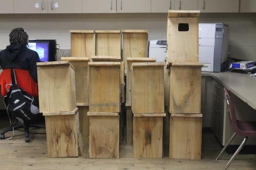 25 Boxes