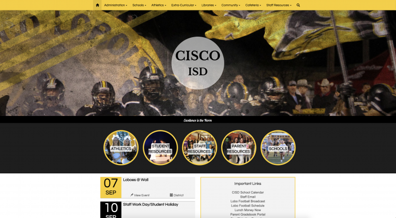 Cisco ISD