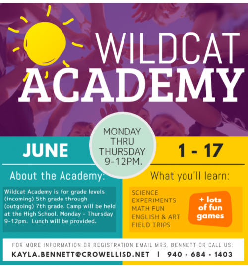 wildcat academy