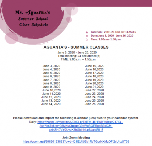 Aguanta Summer School Flyer