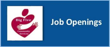 Big Five Job Openings