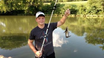 Nolan fish