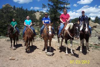colorado horses