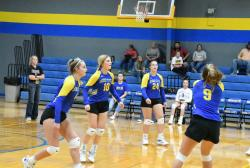 Reset, Rolling and Ranked: Lady Hornets fill void at setter, continue winning ways in 2020