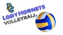 Lady Hornets v'ball now No. 5